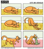 Why Cats are Assholes by Bearman Cartoons